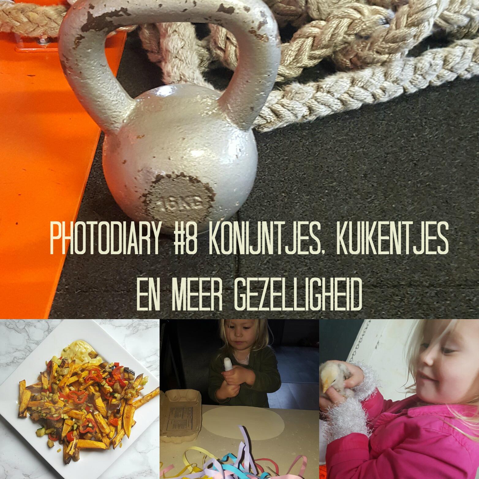 Photodiary #8 konijntjes, kuikentjes en nog meer gezelligheid