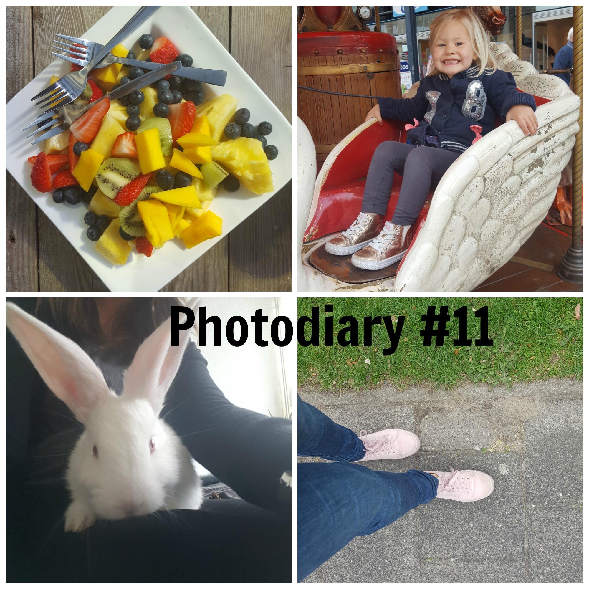 Photodiary #11 buiten spelen, kinderboerderij & meisjespannenkoeken