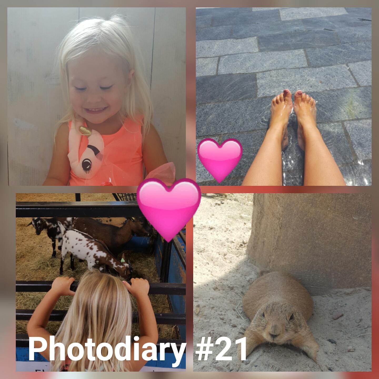 Photodiary #21 Kinderboerderij, wildlands & verjaardag Tess